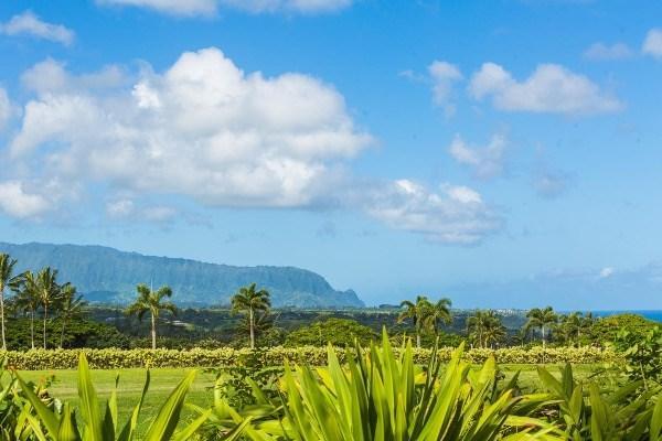 2771 Kauapea Road, Kilauea, HI 96754 (MLS #299239) :: Elite Pacific Properties
