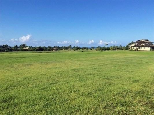Uluwehi, Koloa, HI 96756 (MLS #600041) :: Kauai Real Estate Group