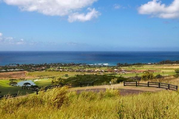 Ka Ho`Oku`I Place, Koloa, HI 96756 (MLS #600296) :: Elite Pacific Properties