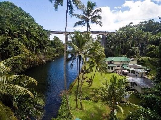 248 Kahoa St, Hilo, HI 96720 (MLS #601027) :: Aloha Kona Realty, Inc.
