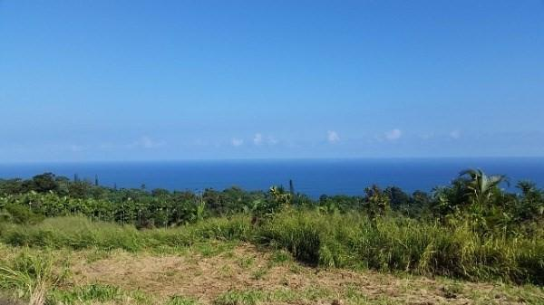 Address Not Published, Laupahoehoe, HI 96764 (MLS #601089) :: Elite Pacific Properties