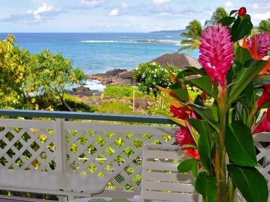 1791 Pee Rd, Koloa, HI 96756 (MLS #601400) :: Aloha Kona Realty, Inc.