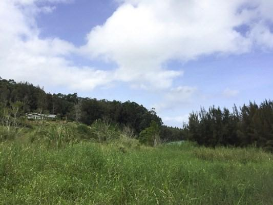Address Not Published, Honokaa, HI 96727 (MLS #601799) :: Elite Pacific Properties