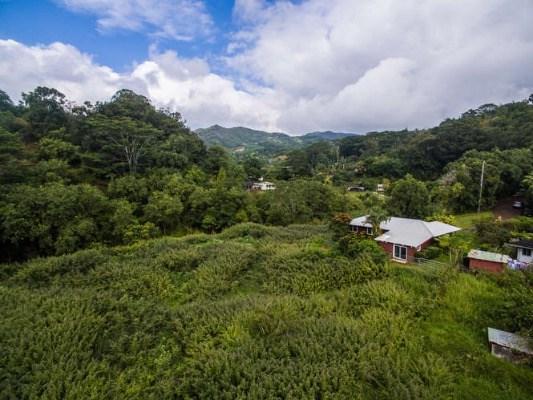 4785 Kua Rd, Kalaheo, HI 96741 (MLS #602306) :: Kauai Exclusive Realty