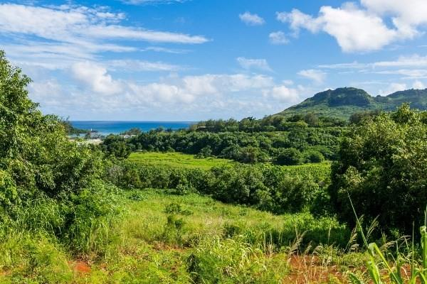 2870 Kapena Street, Lihue, HI 96766 (MLS #602933) :: Elite Pacific Properties
