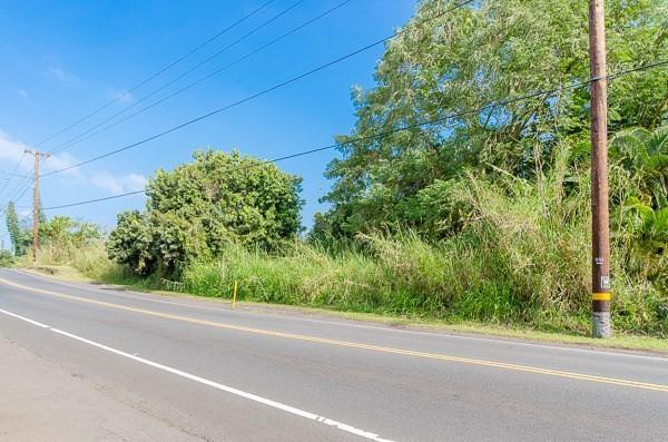 15-2815 Pahoa Village Rd, Pahoa, HI 96778 (MLS #602996) :: Elite Pacific Properties