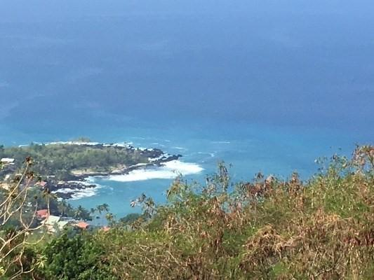 Pali Poku, Captain Cook, HI 96704 (MLS #603069) :: Aloha Kona Realty, Inc.