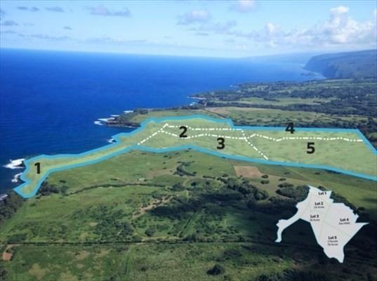 Address Not Published, Kapaau, HI 96755 (MLS #604164) :: Elite Pacific Properties