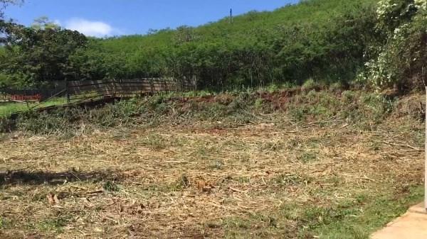 3591 Hanapepe Rd, Hanapepe, HI 96716 (MLS #604498) :: Kauai Exclusive Realty