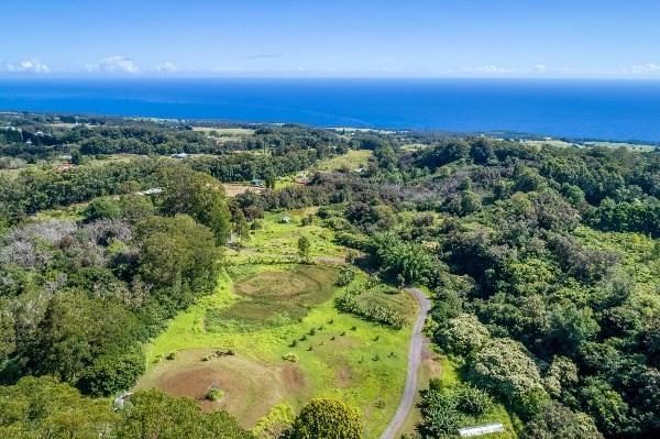 44-3265 Hoo Kahua Rd, Honokaa, HI 96727 (MLS #604854) :: Aloha Kona Realty, Inc.