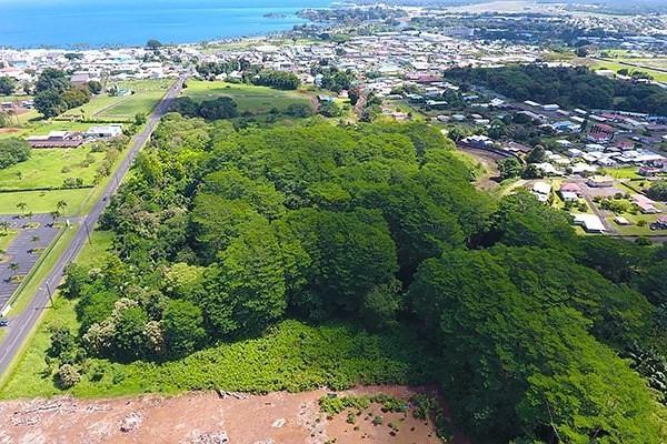 Ponahawai, Hilo, HI 96720 (MLS #605015) :: Elite Pacific Properties