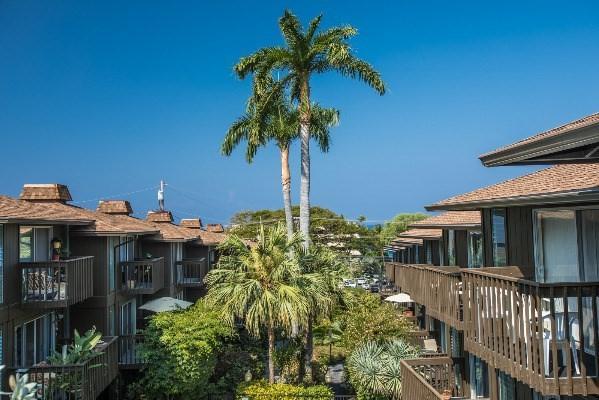 75-5855 Walua Rd, Kailua-Kona, HI 96740 (MLS #605410) :: Aloha Kona Realty, Inc.