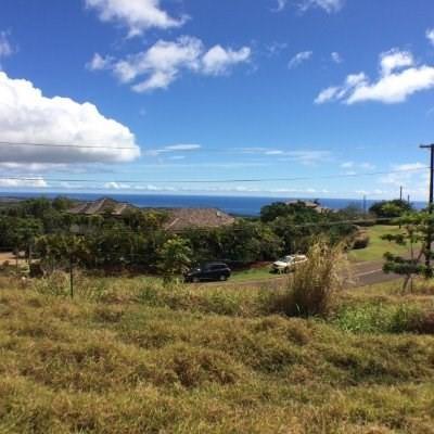 Puu Rd, Kalaheo, HI 96741 (MLS #605549) :: Elite Pacific Properties