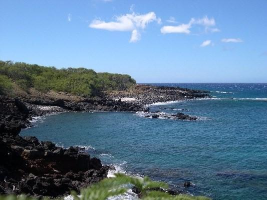 56-175 Pualani Rd, Hawi, HI 96719 (MLS #605715) :: Iokua Real Estate, Inc.