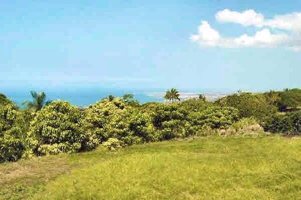 77-6223 Kaumalumalu Drive, Holualoa, HI 96725 (MLS #606156) :: Song Real Estate Team | LUVA Real Estate