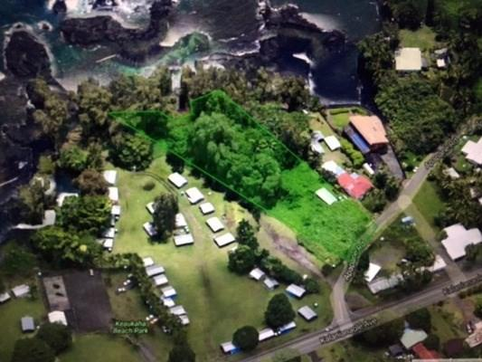 33 Apapane Rd, Hilo, HI 96720 (MLS #606516) :: Elite Pacific Properties