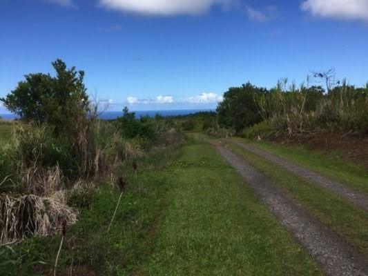 Address Not Published, Pepeekeo, HI 96783 (MLS #606801) :: Elite Pacific Properties