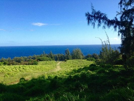 Address Not Published, Honokaa, HI 96727 (MLS #606843) :: Aloha Kona Realty, Inc.