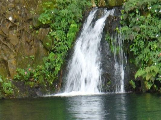 271 Kaiulani St, Hilo, HI 96720 (MLS #607313) :: Aloha Kona Realty, Inc.