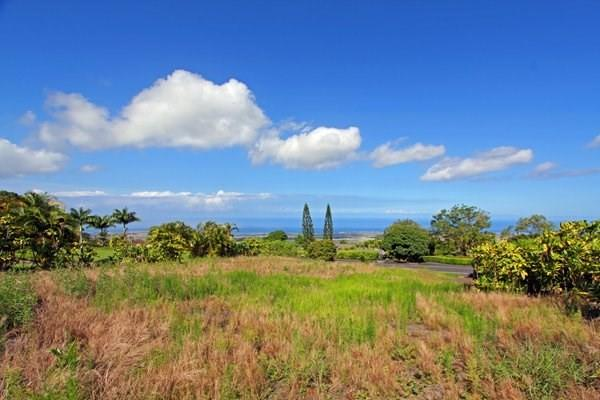 73-4457 Aniani Street, Kailua-Kona, HI 96740 (MLS #607413) :: Elite Pacific Properties