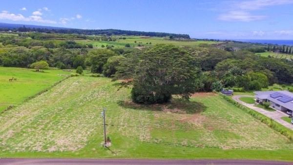 Address Not Published, Pepeekeo, HI 96783 (MLS #607796) :: Aloha Kona Realty, Inc.
