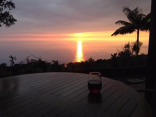 87-3020 Hawaii Belt Rd, Captain Cook, HI 96704 (MLS #607850) :: Aloha Kona Realty, Inc.