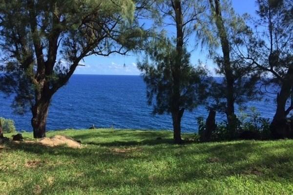 Paauhau Rd, Honokaa, HI 96727 (MLS #607911) :: Aloha Kona Realty, Inc.