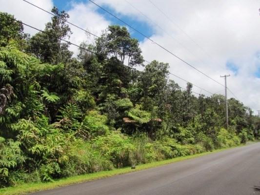 Address Not Published, Volcano, HI 96785 (MLS #608045) :: Elite Pacific Properties