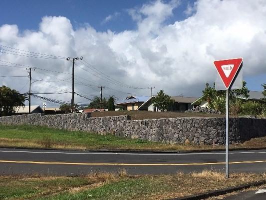 875 Waianuenue Ave, Hilo, HI 96720 (MLS #608051) :: Aloha Kona Realty, Inc.