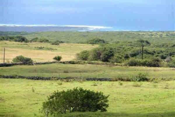 Kamaoa Rd, Naalehu, HI 96772 (MLS #608774) :: Aloha Kona Realty, Inc.