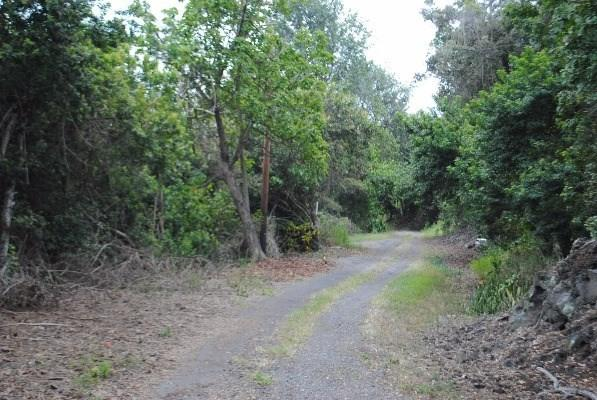 Address Not Published, Captain Cook, HI 96704 (MLS #608992) :: Elite Pacific Properties