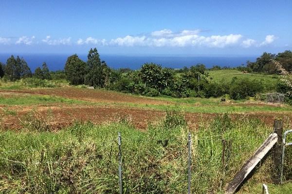 32-413 Piha Kahuku Rd, Ninole, HI 96773 (MLS #609085) :: Aloha Kona Realty, Inc.