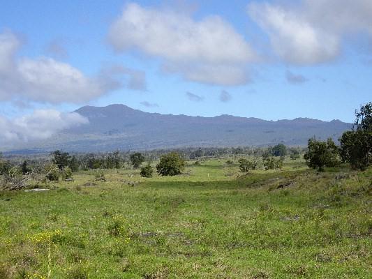 Puulehua Drive, Kealakekua, HI 96750 (MLS #609147) :: Aloha Kona Realty, Inc.