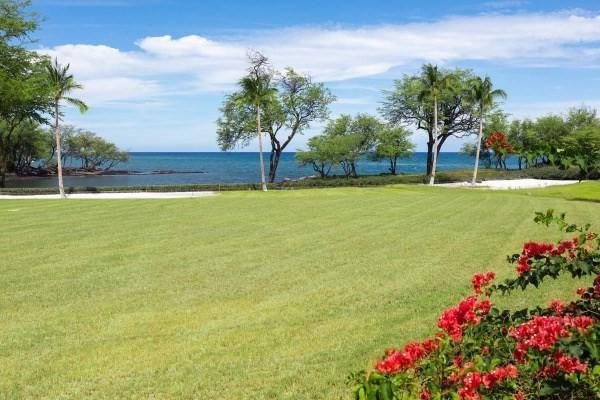 69-1538 Puako Beach Dr, Kamuela, HI 96743 (MLS #609260) :: Steven Moody