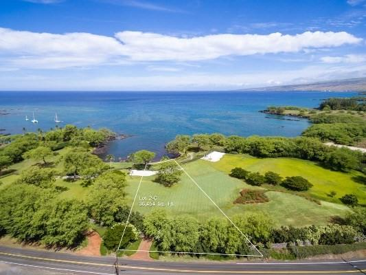 69-1542 Puako Beach Dr, Kamuela, HI 96743 (MLS #609261) :: Elite Pacific Properties