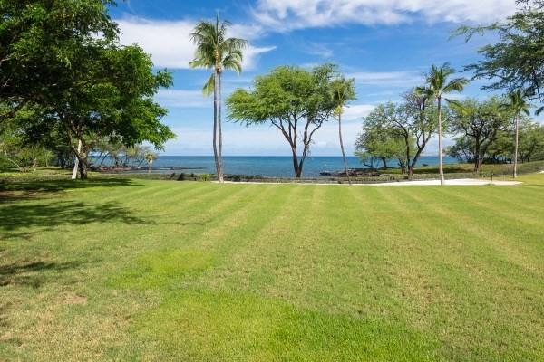 69-1544 Puako Beach Dr, Kamuela, HI 96743 (MLS #609262) :: Elite Pacific Properties
