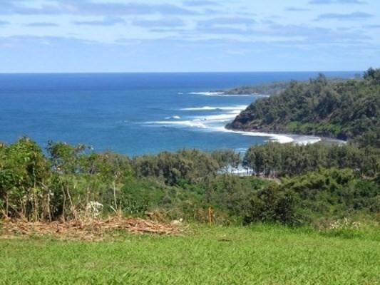 Pali Moana Place, Kilauea, HI 96754 (MLS #609436) :: Kauai Exclusive Realty