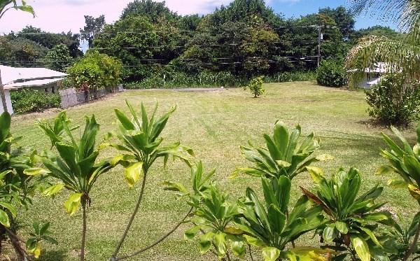 283 W Puainako St, Hilo, HI 96720 (MLS #609697) :: Elite Pacific Properties