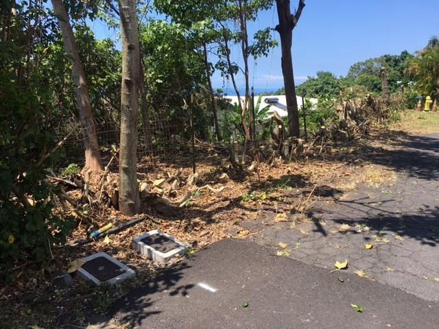72-3992 B Rd, Kailua-Kona, HI 96740 (MLS #609851) :: Aloha Kona Realty, Inc.