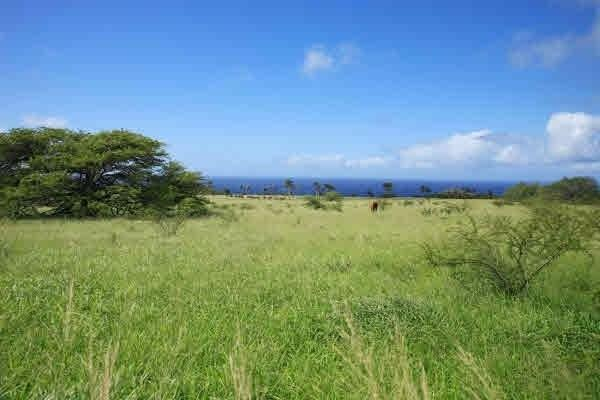 Puakea Bay Ranch, Hawi, HI 96719 (MLS #610254) :: Aloha Kona Realty, Inc.