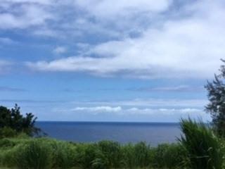 32-1030 Old Mamalahoa Hwy, Ninole, HI 96773 (MLS #610446) :: Elite Pacific Properties