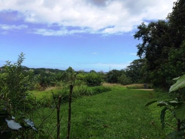 Waipouli Rd, Kapaa, HI 96746 (MLS #611080) :: Elite Pacific Properties
