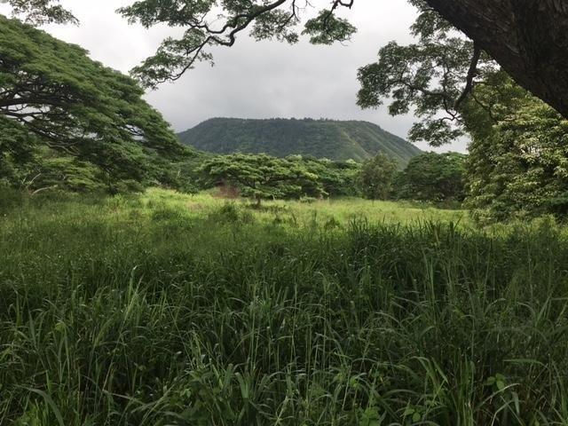 Hiliea/ Punalu'u Rd, Pahala, HI 96777 (MLS #612431) :: Aloha Kona Realty, Inc.