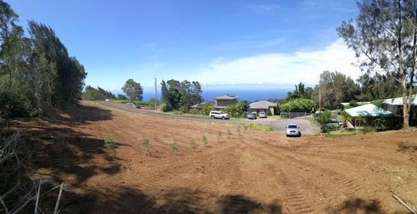 Address Not Published, Honokaa, HI 96727 (MLS #612714) :: Aloha Kona Realty, Inc.