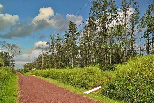 Emerald Dr, Pahoa, HI 96778 (MLS #612786) :: Elite Pacific Properties