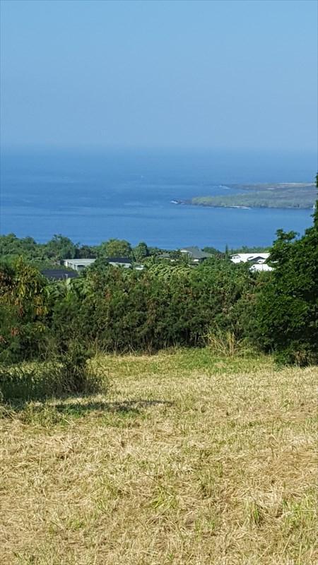 Address Not Published, Captain Cook, HI 96704 (MLS #613143) :: Aloha Kona Realty, Inc.