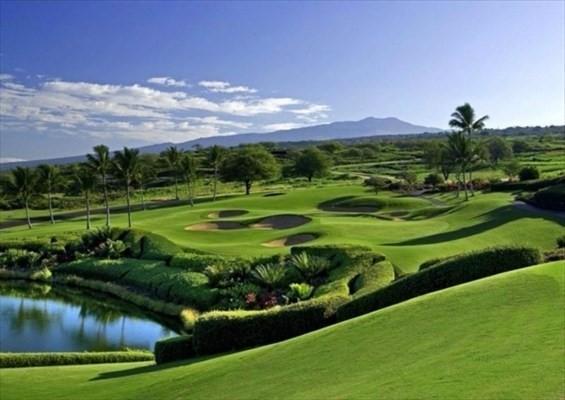 81-6581 Ka Waena Wy, Kealakekua, HI 96750 (MLS #613185) :: Aloha Kona Realty, Inc.