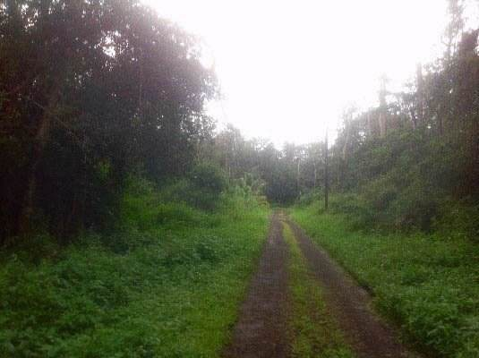 https://bt-photos.global.ssl.fastly.net/hawaii/orig_boomver_1_613649-2.jpg