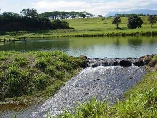 2-F Loihi Place, Kapaa, HI 96746 (MLS #613745) :: Kauai Real Estate Group