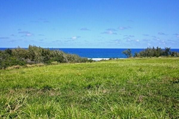 5442 Kalealea St, Anahola, HI 96703 (MLS #613768) :: Kauai Exclusive Realty